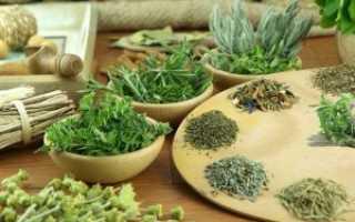 Какие народные средства помогают лечить остеопороз
