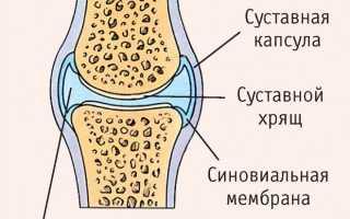 Лекарства с гиалуроновой кислотой для суставов
