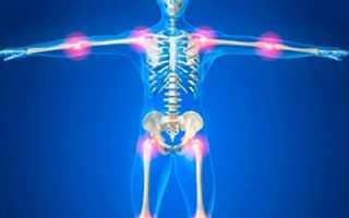 Классификация суставов человека анатомия
