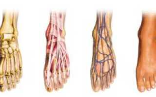 Травмы связочного аппарата голеностопа коллатеральные наружные латеральные и боковые