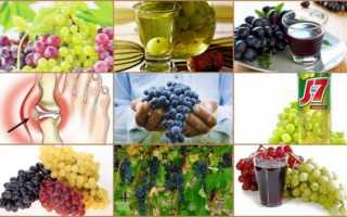 Можно ли есть клюкву при подагре? Какие ягоды можно при подагре: клюква, брусника, вишня, облепиха,