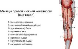Боль под коленом сзади: причины и лечение