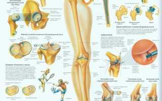 Народная медицина от боли в колене при сгибании и разгибании