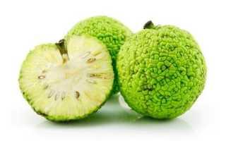 Адамово яблоко для суставов рецепт