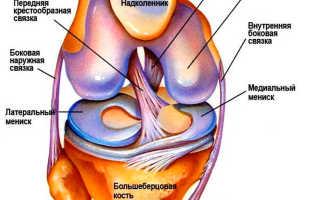 Упражнения для боковых связок коленного сустава
