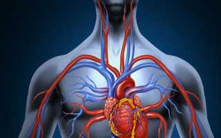 Мази при артрозе помогут восстановить двигательную функцию и облегчить симптомы