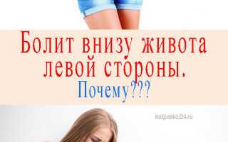 Что находится с левой стороны внизу живота у женщин и мужчин